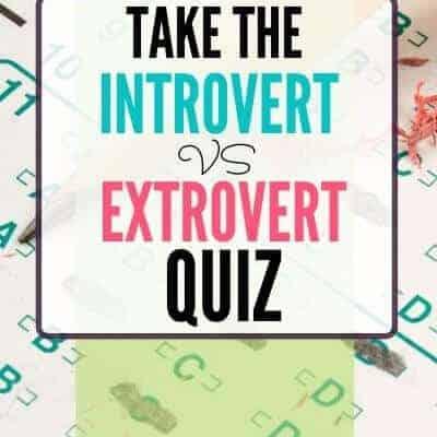 Introvert vs Extrovert Quiz